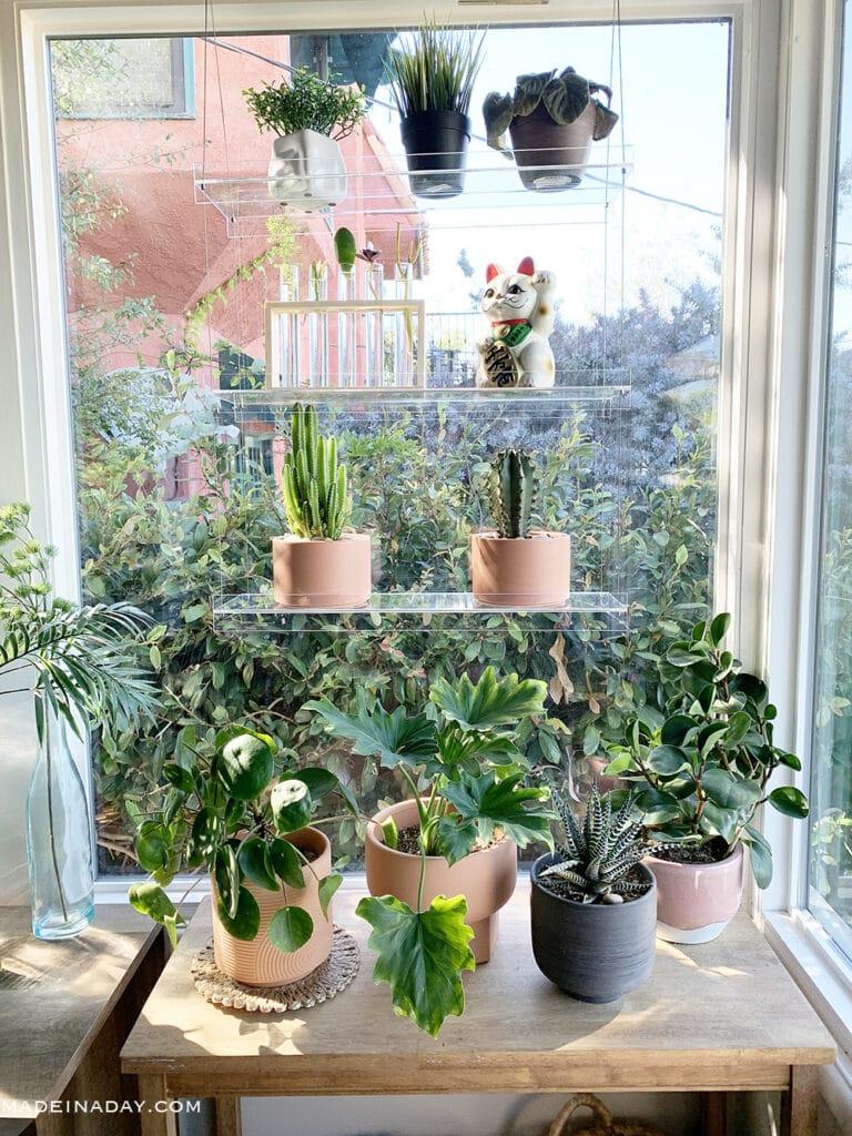 Floating shelves, Window shelves, plant window shelf