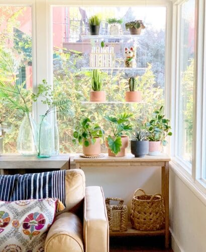 Catching Rays with Window Plant Shelves 2