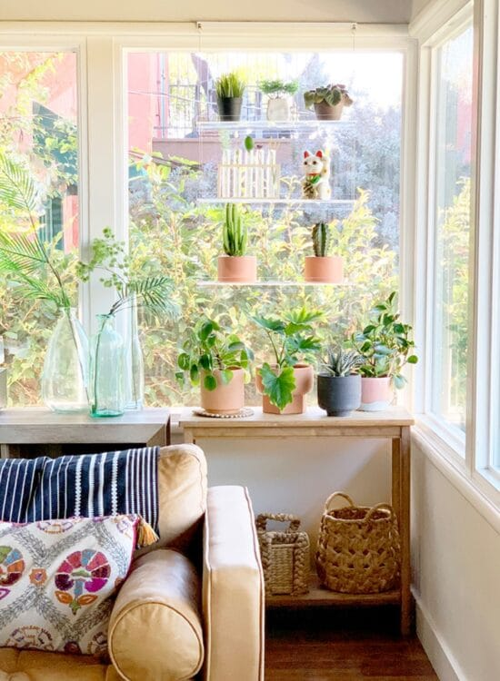 Catching Rays with Window Plant Shelves 1