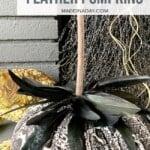 Snakeskin Fabric Feather Pumpkins 1