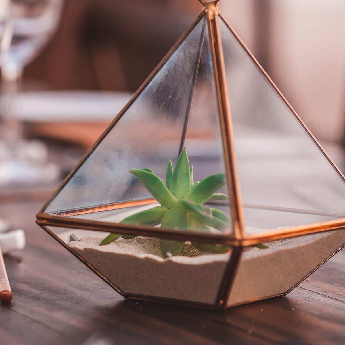 DIY Mini Succulent Terrariums Are Perfect For Summer