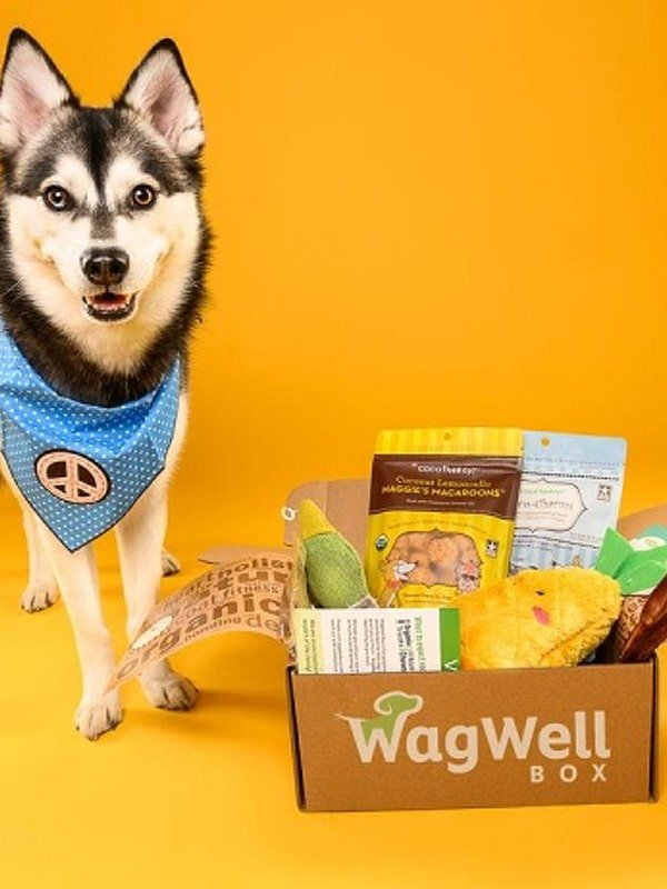 wag well