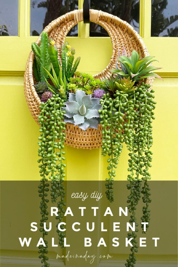 succulent hanging wall basket