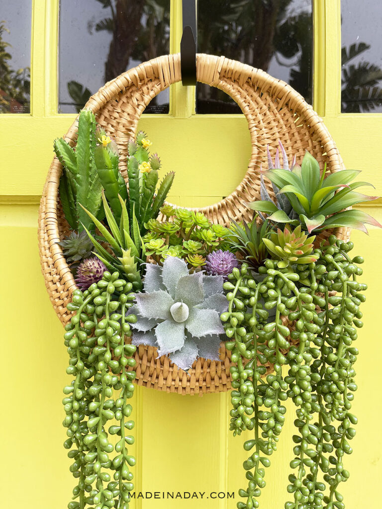 round succulent wall planter