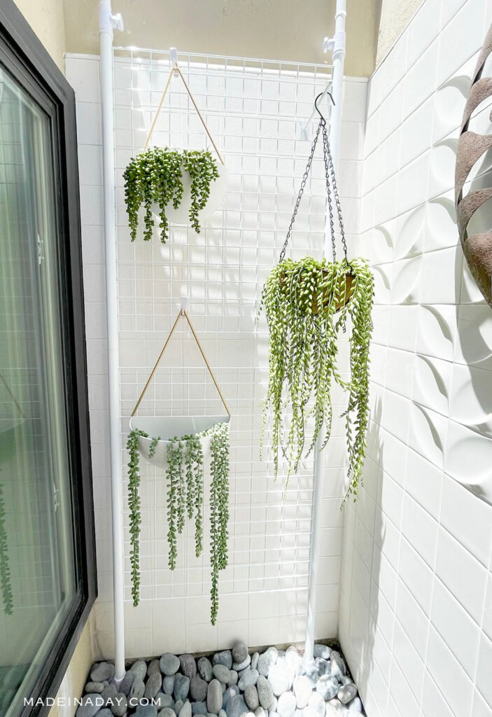 string of pearl hanging plants in atrium