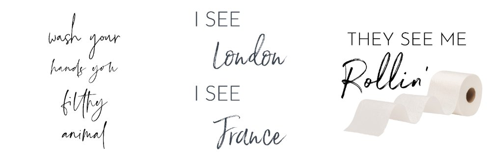 Wash Your Hands You Filthy Animal                  I see London I See France                     They See Me Rollin'