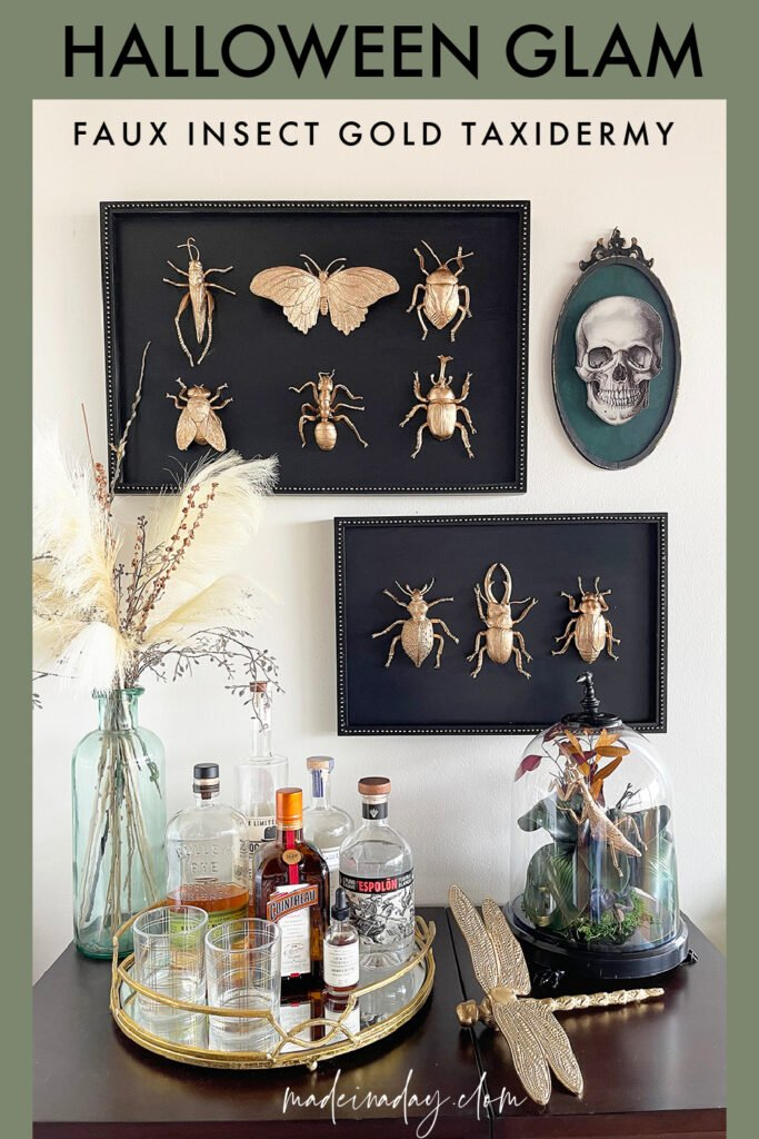 DIY Halloween Taxidermy Gold Insect Specimens