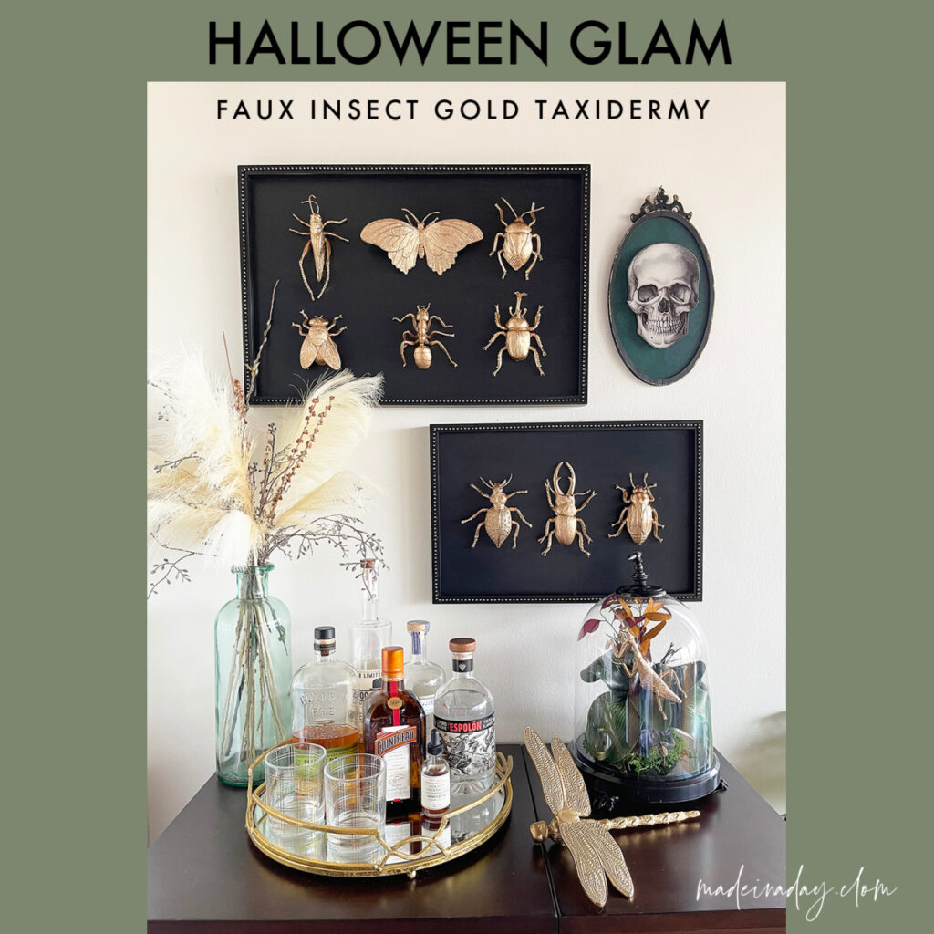 DIY Halloween Taxidermy Gold Mounted Insect Specimens