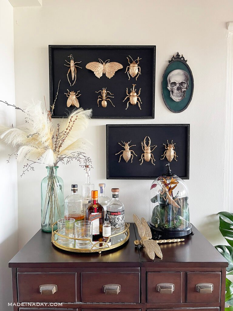 Halloween gold leaf insect taxidermy