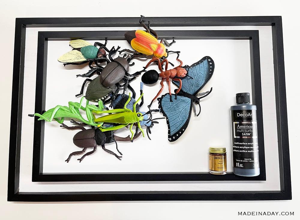 plastic insect specimen art Entomology